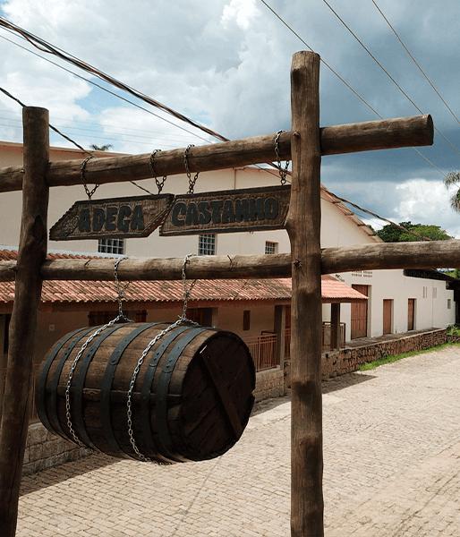 Vinho Flor de Syrah – Vinícola Castanho